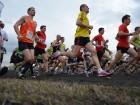 Cross 2013-71 Courses (120)